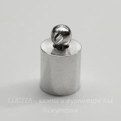 Концевик для шнура 5,5 мм, 10х6 мм, (цвет - платина), 10 штук