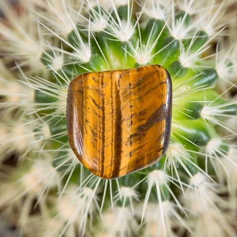 Тигровый Глаз (ЮАР)