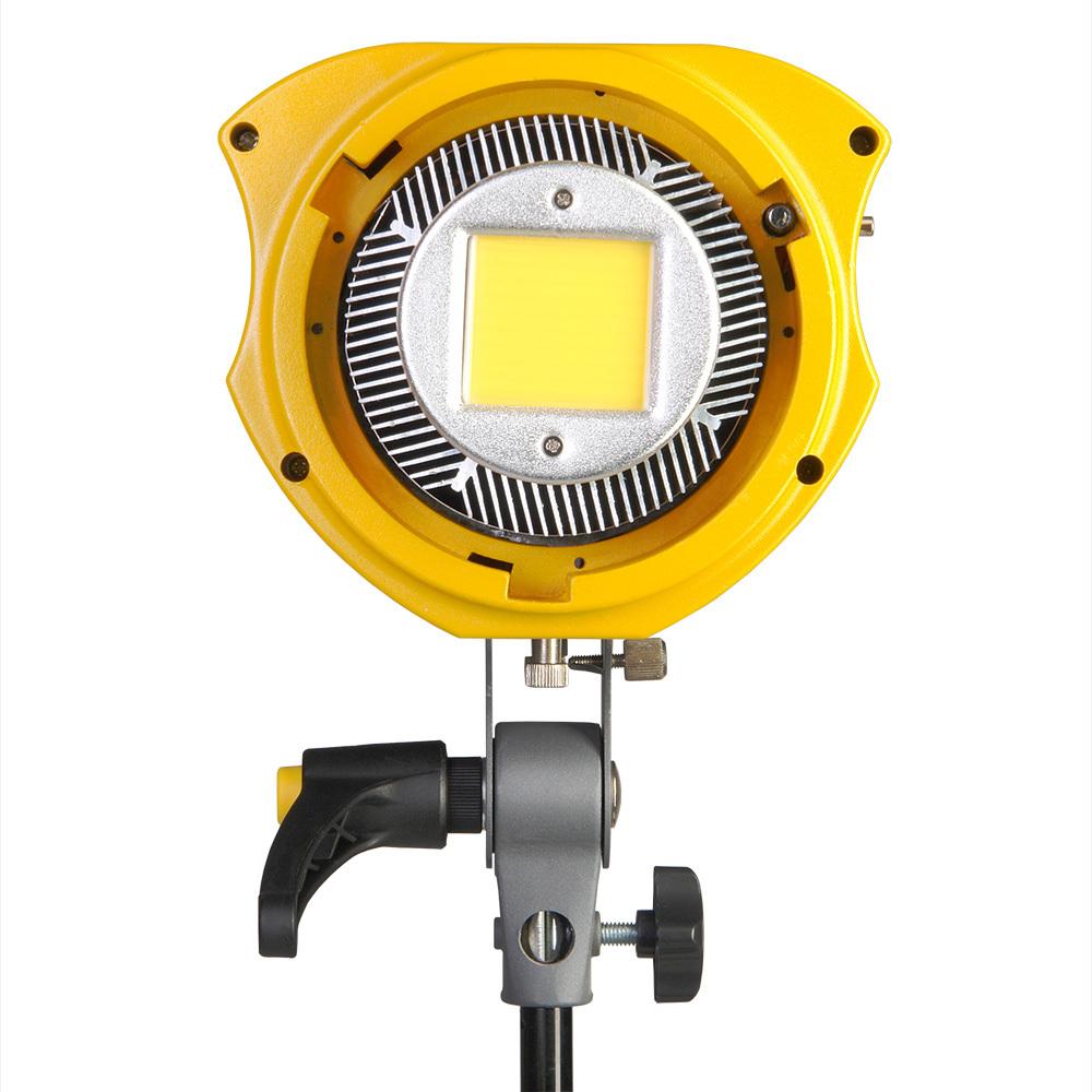 GreenBean SunLight 100 LEDX2 BW