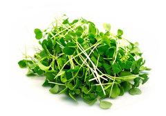 Микрозелень подсолнечника, 125г