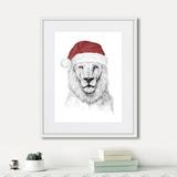 Балаш Солти - Santa lion