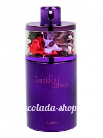 Orchidea Celeste
