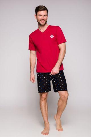 Мужская пижама 9S Borys 2196-2212-01 Taro