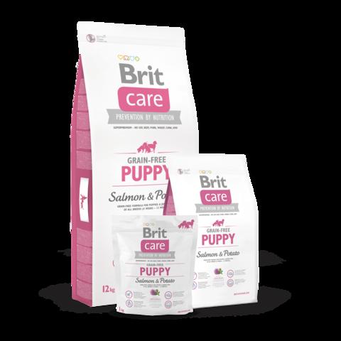 Brit Care GF Puppy Salmon & Potato Сухой корм для щенков всех пород Лосось с картофелем беззерновой