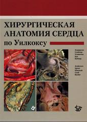 Хирургическая анатомия сердца по Уилкоксу