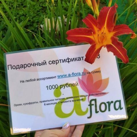 Фотография sert1000-500x500__1_.jpg купить в магазине Афлора