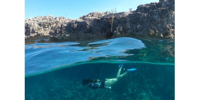 Купол для съемки в воде PolarPro Fifty Fifty H-5 фото под водой