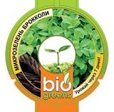 Лоток для проращивания + семена брокколи в ПОДАРОК