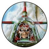 Iron Maiden / Powerslave (Picture Disc)(LP)