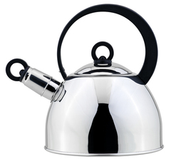 Чайник со свистком 93-TEA-25