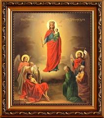 Всех скорбящих радость. Икона Божьей Матери с младенцем на руках.
