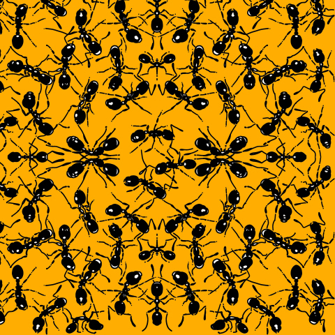 Муравьи на желтом фоне