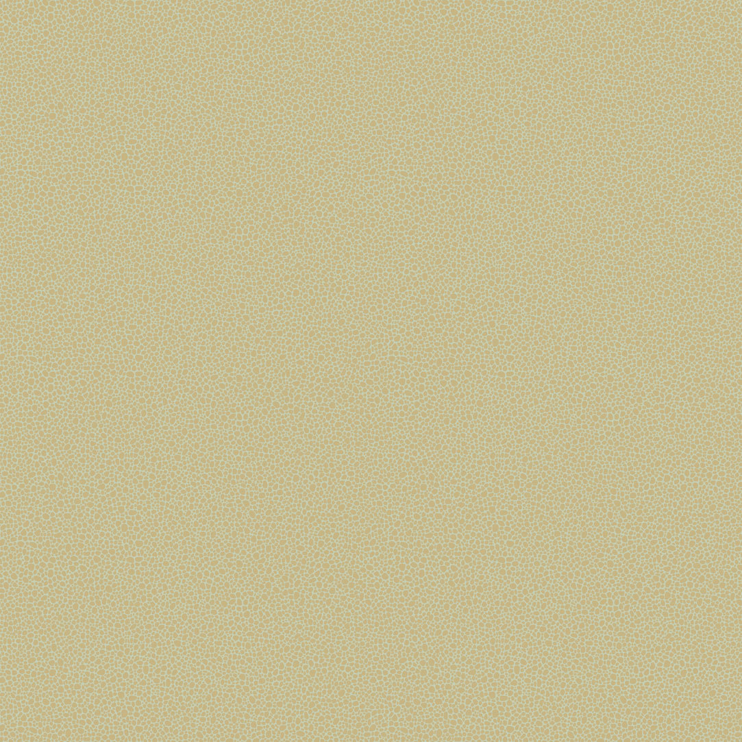 Обои Cole & Son Curio 107/9041, интернет магазин Волео