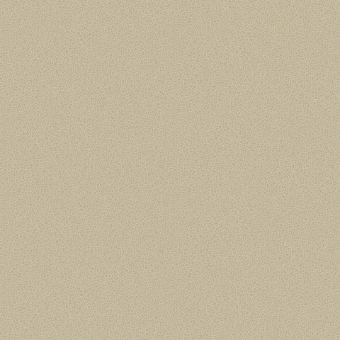Обои Cole & Son Curio 107/9042, интернет магазин Волео
