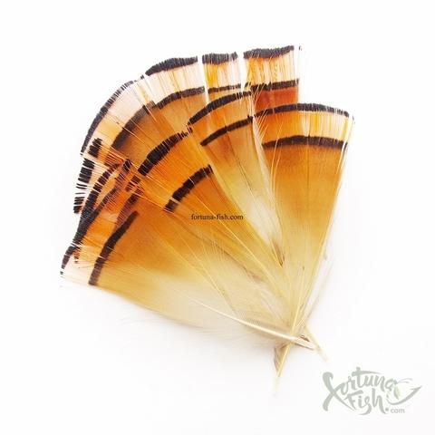 Шейные перья золотого фазана Golden Pheasant Tippets (10 шт)