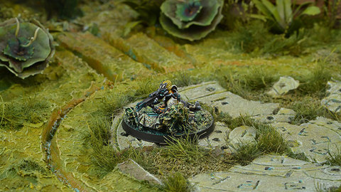 Nikoul Ambush Unit (Viral Sniper, Sapper)