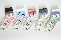Носки для девочек ( 10 пар) арт.007-8 (р. 15-20 )