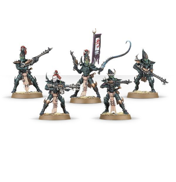 Start Collecting! Dark Eldar. Воины-кабалиты