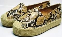 Обувь на платформе Lily shoes Q38snake.