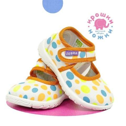 Туфли разноцветные, Зебра