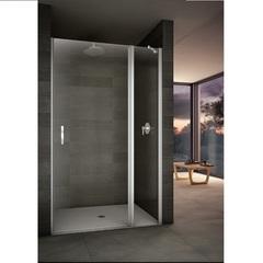 Дверь душевая в нишу маятниковая 110х195 см Provex Look 2006 LN 05 GL фото