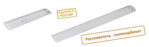 Светильник СПО 60х2 под LED лампу T8 (рассеиватель поликарбонат) TDM