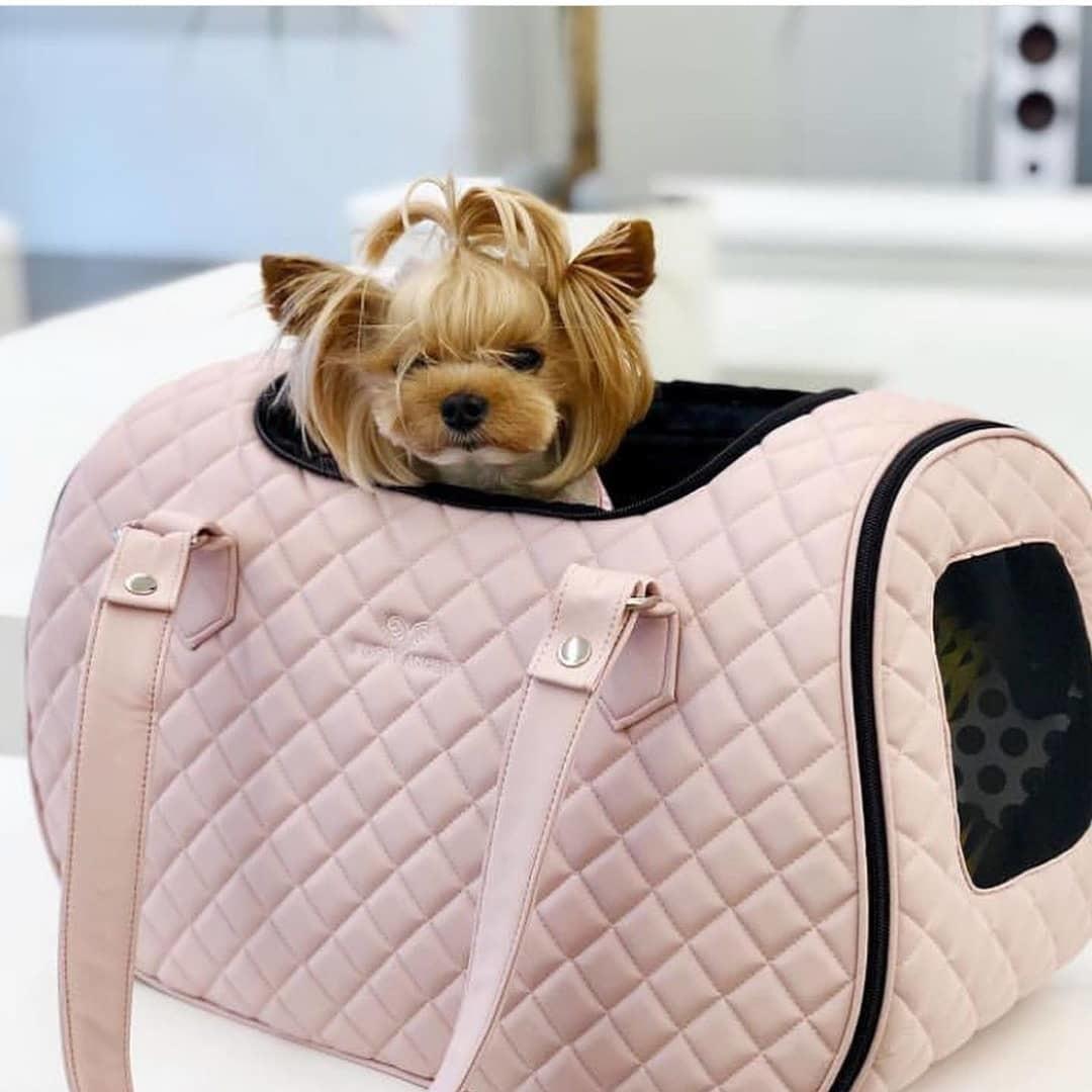 сумка переноска для собак авиа
