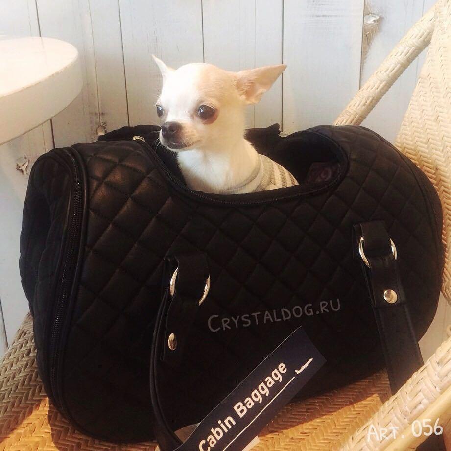сумка для самолета для чихуахуа