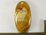 Симбирцит  53х28х7 мм