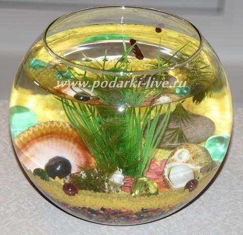 Мини аквариум шар 3 л