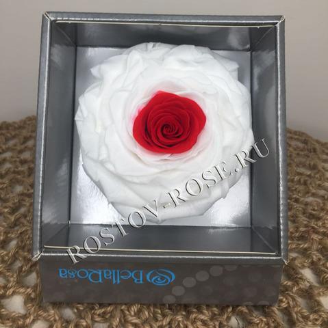 Розы стабилизированные - композиция Подлинное сокровище