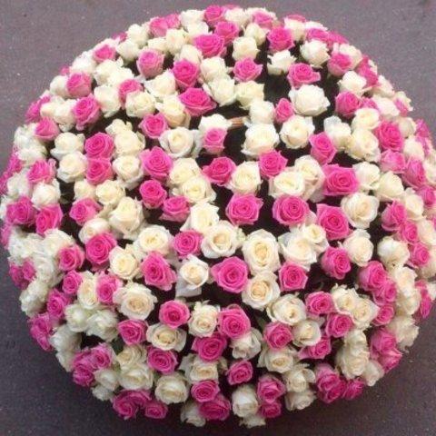 Букет из 201 белой и розовой розы