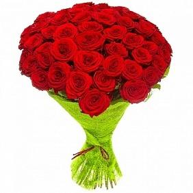 Цветы 51 красная роза 51_красн_роза.jpg
