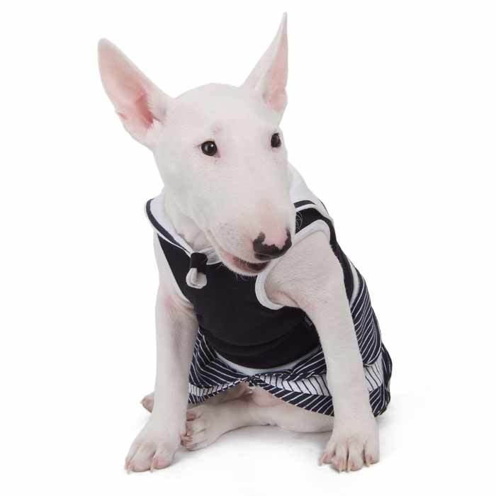 087 PA - Платье для собак