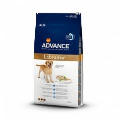 Корм для собак породы лабрадоров, Advance Labrador Retriever, с курицей и рисом