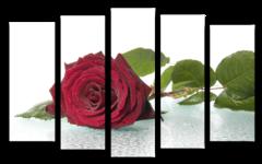 """Модульная картина """"Одинокая роза"""""""