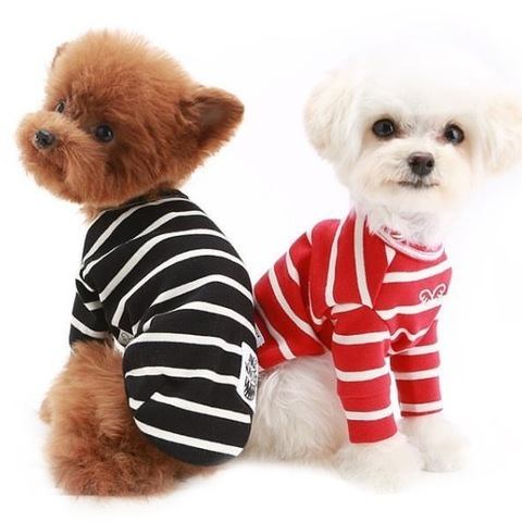 564 PA - Свитшот для собак