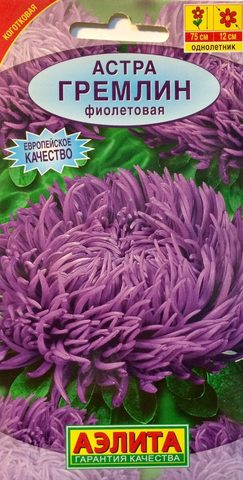 Семена Цветы Астра Гремлин фиолетовая