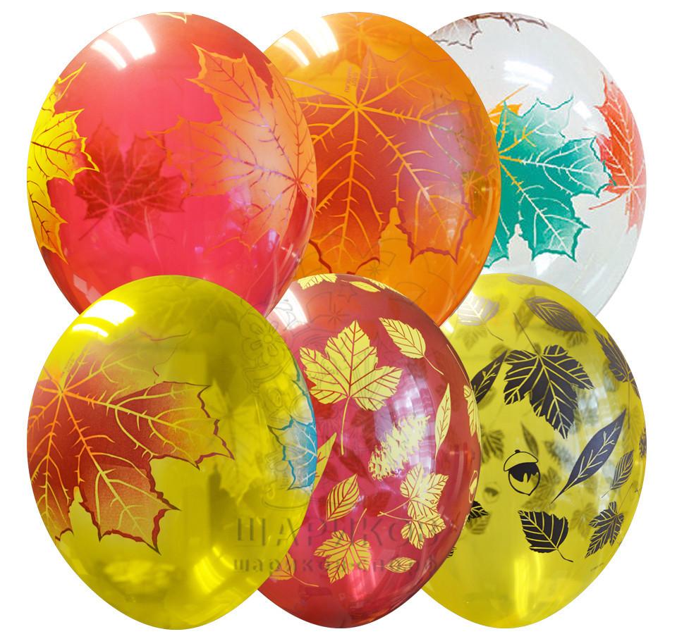 Воздушные шары Кленовые листья (фото 2)