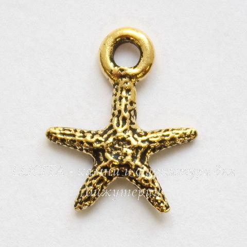 """Подвеска TierraCast """"Морская звезда"""" маленькая (цвет-античное золото) 13х10 мм"""