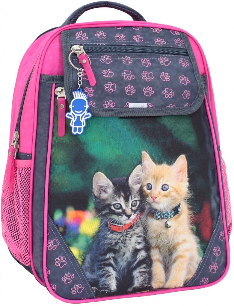 Школьные рюкзаки Рюкзак школьный Bagland Отличник 20 л. 321 сiрий 143 д (0058070) b3f1ba764509b453d6cc48e0969e5cb7.JPG
