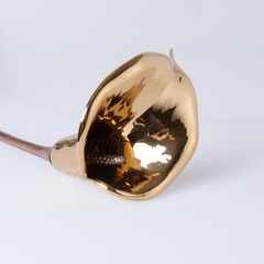 Калла золото 23111-98