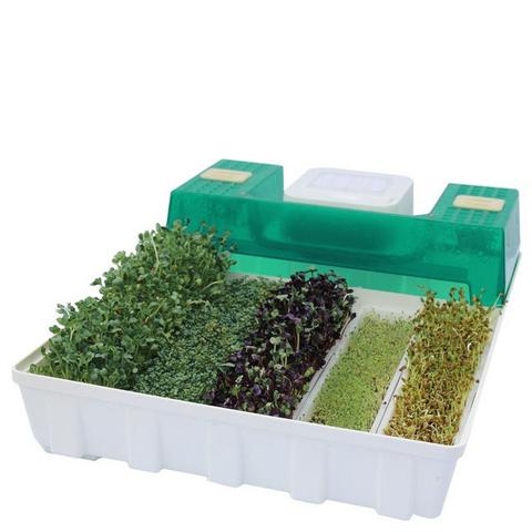 Проращиватель семян (микроферма) EasyGreen EGL 55