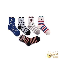 Носки для мальчика (3-8) 190108-3127.3