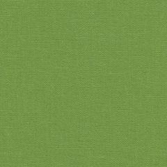 Простыня на резинке 180x200 Сaleffi Tinta Unito с бордюром зеленая