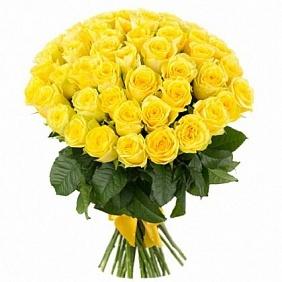 Цветы 51 желтая роза 51_желтая_роза.jpg