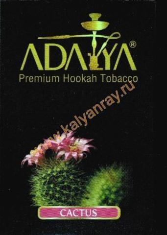 Adalya Cactus