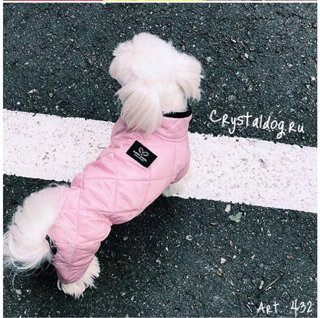 432 PA - Комбинезоны для собак