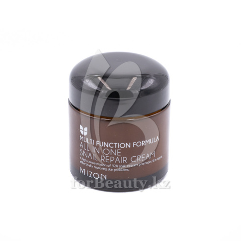 Mizon Multi Function Formula All In One Snail Repair Cream