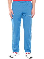4176-2 спортивные брюки мужские, голубые